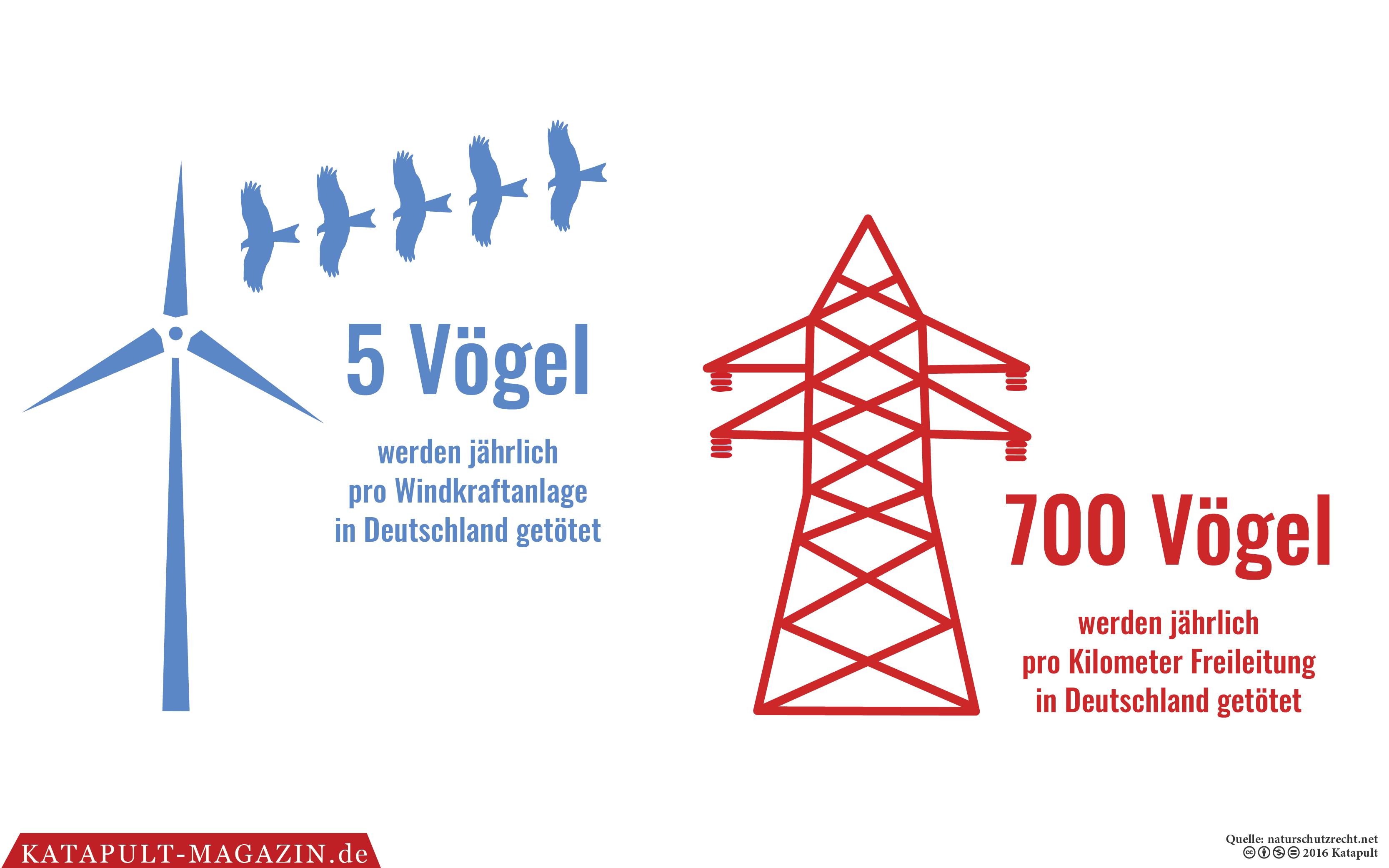 Windkraftanlagen Vögel